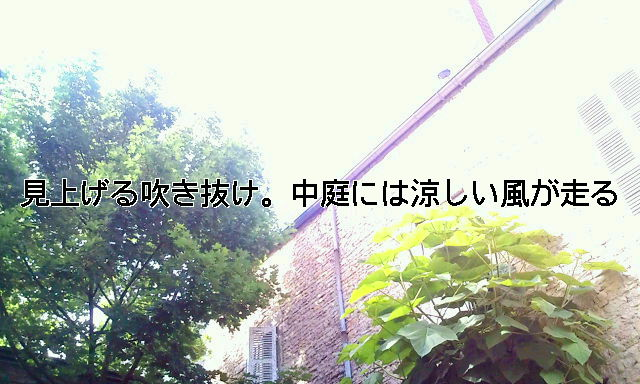 20090601093631.jpg