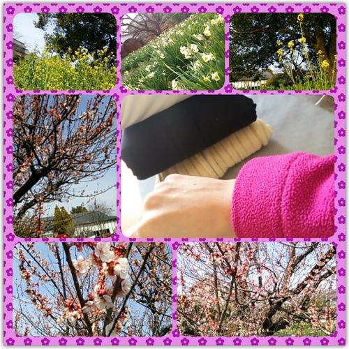 PhotoFancie2014_03_08_18_08_26.jpeg
